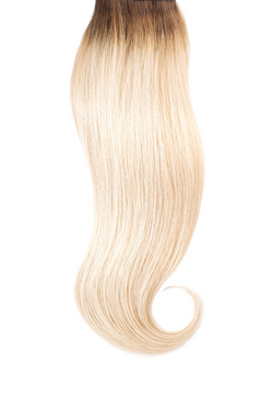 Rooted Laguna Remy Tape In