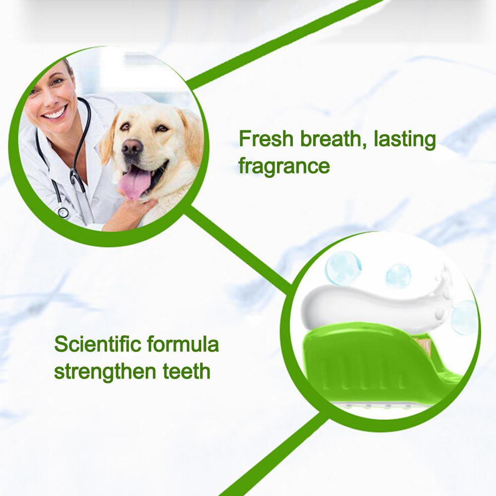 Pet Toothbrush Toothpaste Set Cat Dog Oral Hygiene Calculus Removing Edible Toothpaste (Free Shipping)