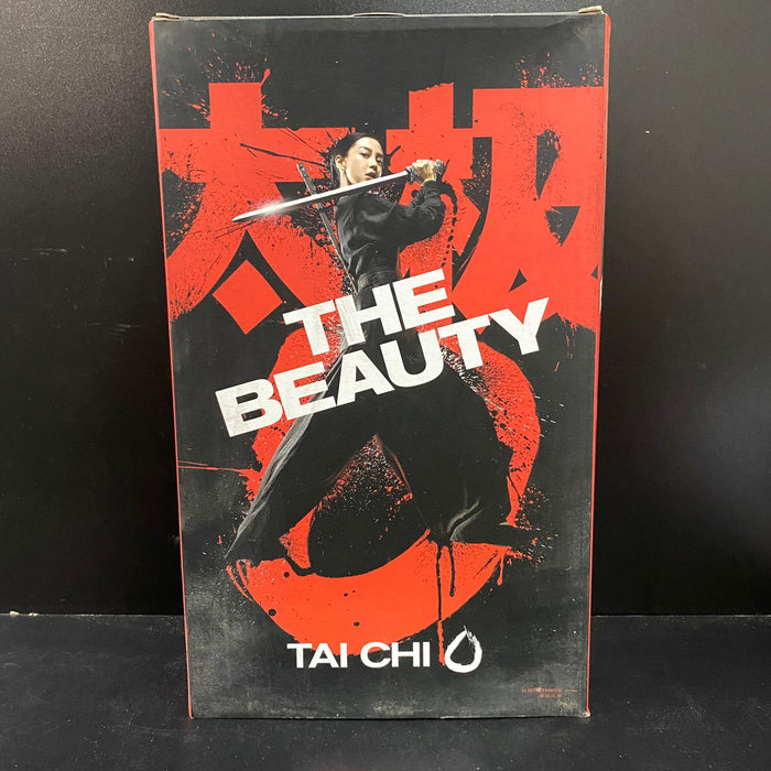 1/6 Action Figure - 73177 TAI CHI - THE BEAUTY 《太極1從零開始》陳玉娘 (Angela baby )