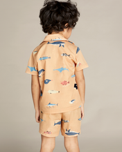 Load image into Gallery viewer, Fish Chart Shirt Set