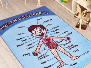 "Anatomy Learning Theme Rugs for Kids Large Carpets 7'x10' 79""X114"" 200X290cm - Rattanglobal"