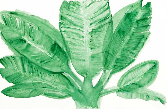 That Night in Waikiki Green Leaves Tropical Art on Canvas