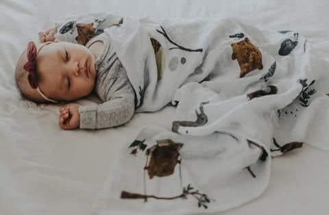 Mr Wild's Whimsy Swaddle - Limited Edition