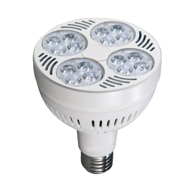 PAR30 LED Jewelry Light Bulbs for recessed cans or track lighting systems. Easily upgrade your halogens to the Diamond LED Lights.