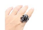 PUNK RING TITANIUM STEEL ALTERNATIVE