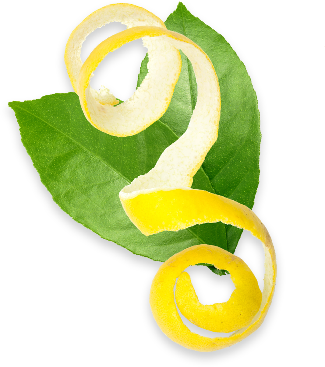 A lemon peel in front of two leaves.