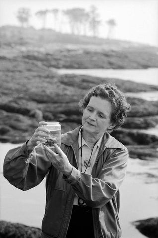 Rachel Carson - Writer, Scientist and Ecologist