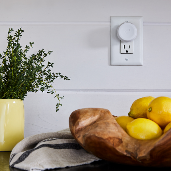 plug hub™ warmer base plugged into outlet