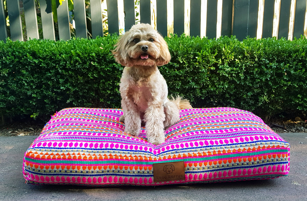 Siesta Surprise Dog Bed