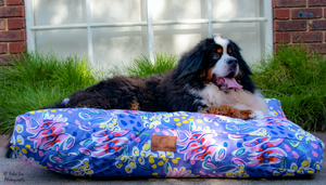 Violet Delights Dog Bed