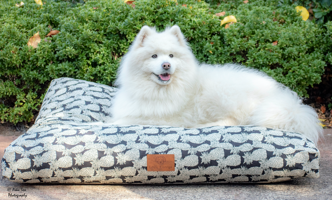 Piney Apples Dog Bed