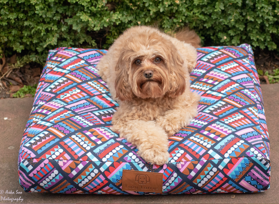 Candy Corner Dog Bed