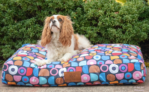 Licorice Allsorts Dog Bed