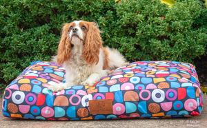 Licorice Allsorts Dog Crate Bed