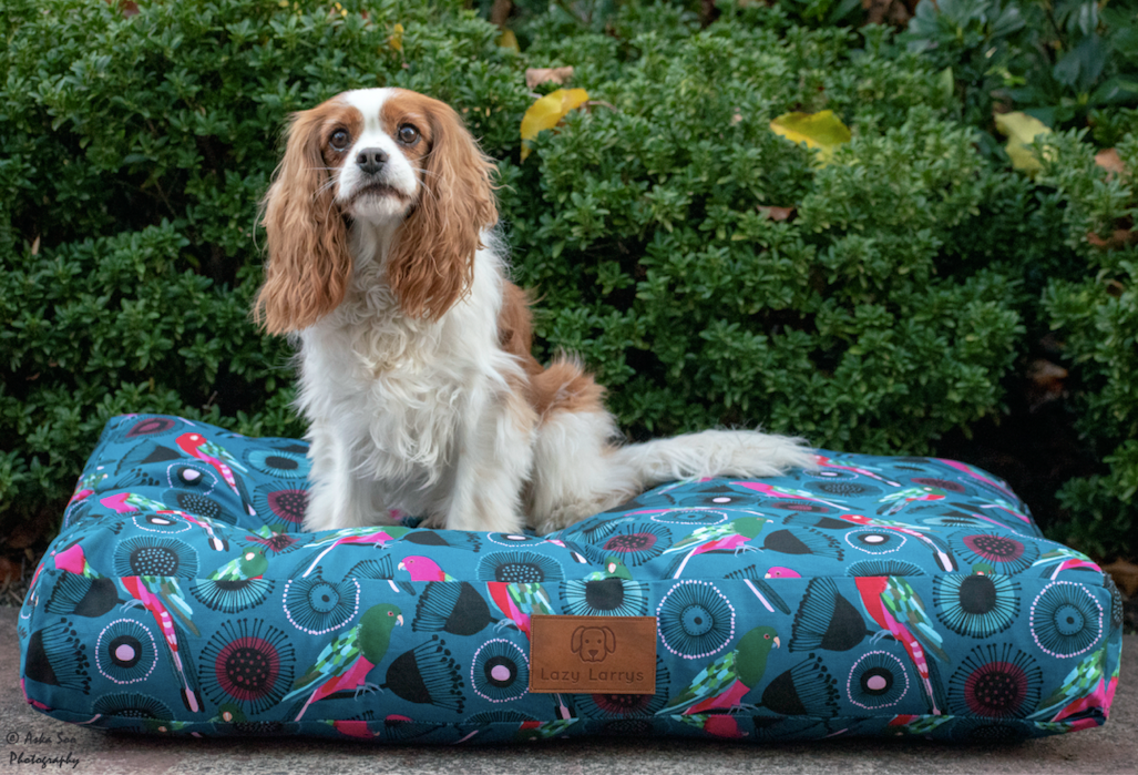 Birds in Paradise Dog Bed