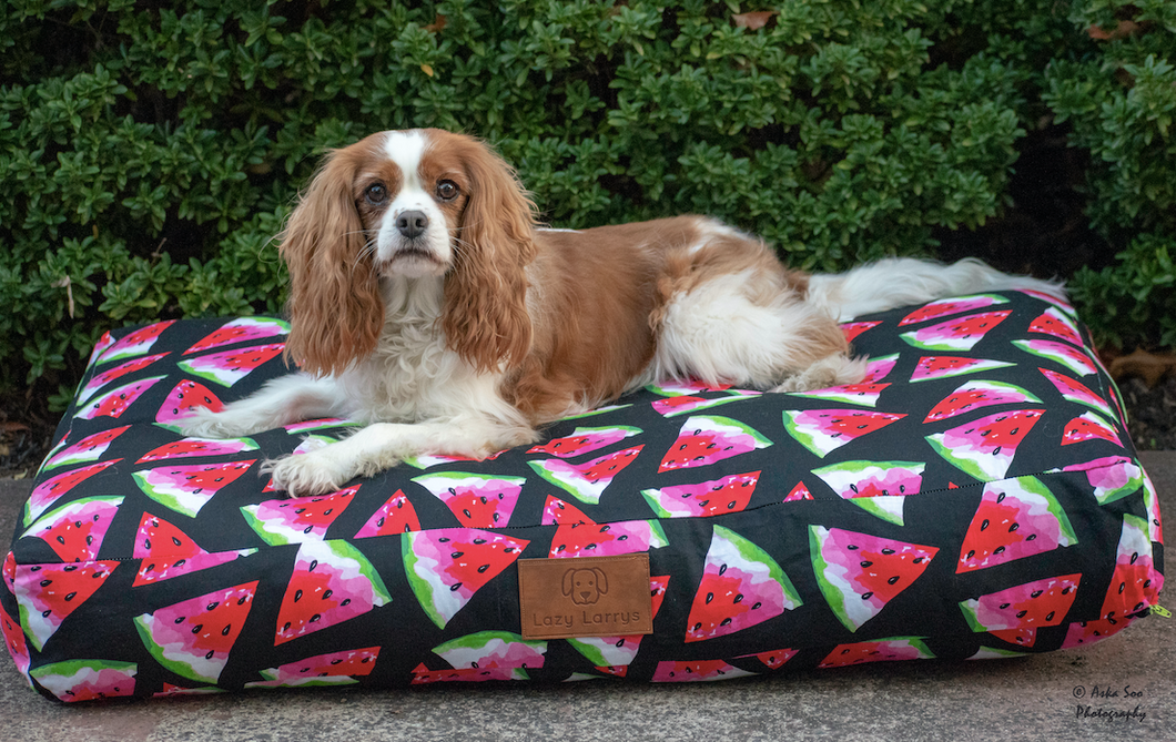 Slice of heaven Dog Bed