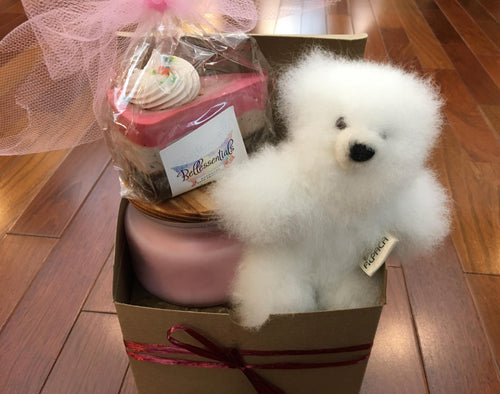 Alpaca Teddy Bear Gift Set