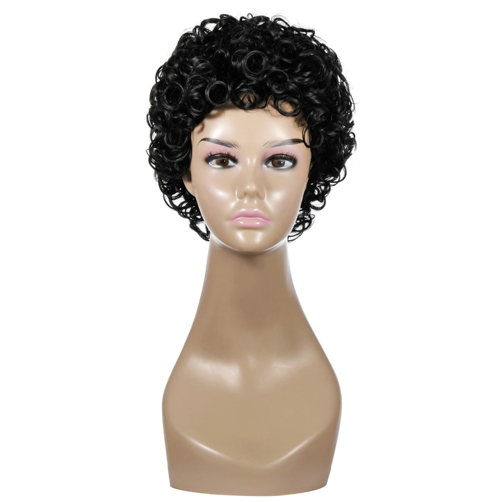 Women's Short Wig Curly Natural Wig Synthetic Wig