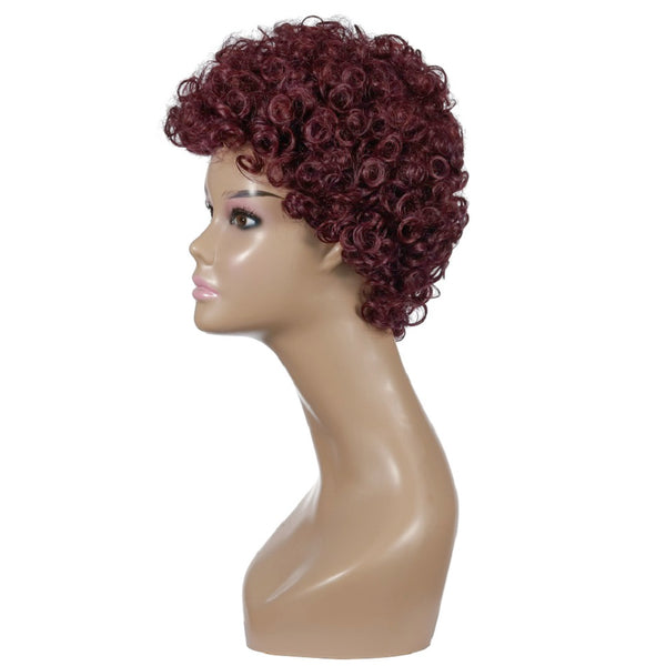 Synthetic Wig Curly Afro Style Wig Women's Wine Red Wig