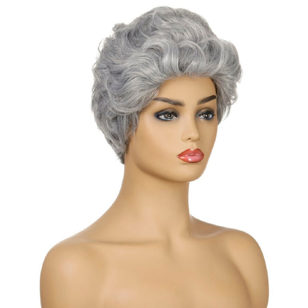 Women's Short Curly Wig Sliver Gray Synthetic Hair 10 Inch