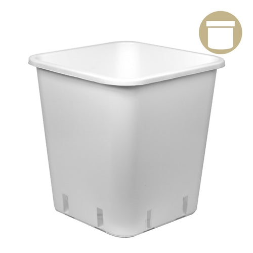 1 Gal. White Square Pot - Oklahoma Growers Supply