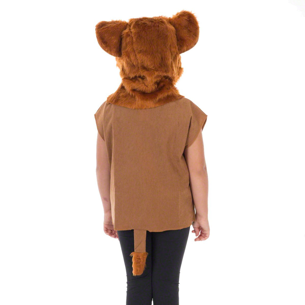 Image of Lion Cub costume for kids | Charlie Crow