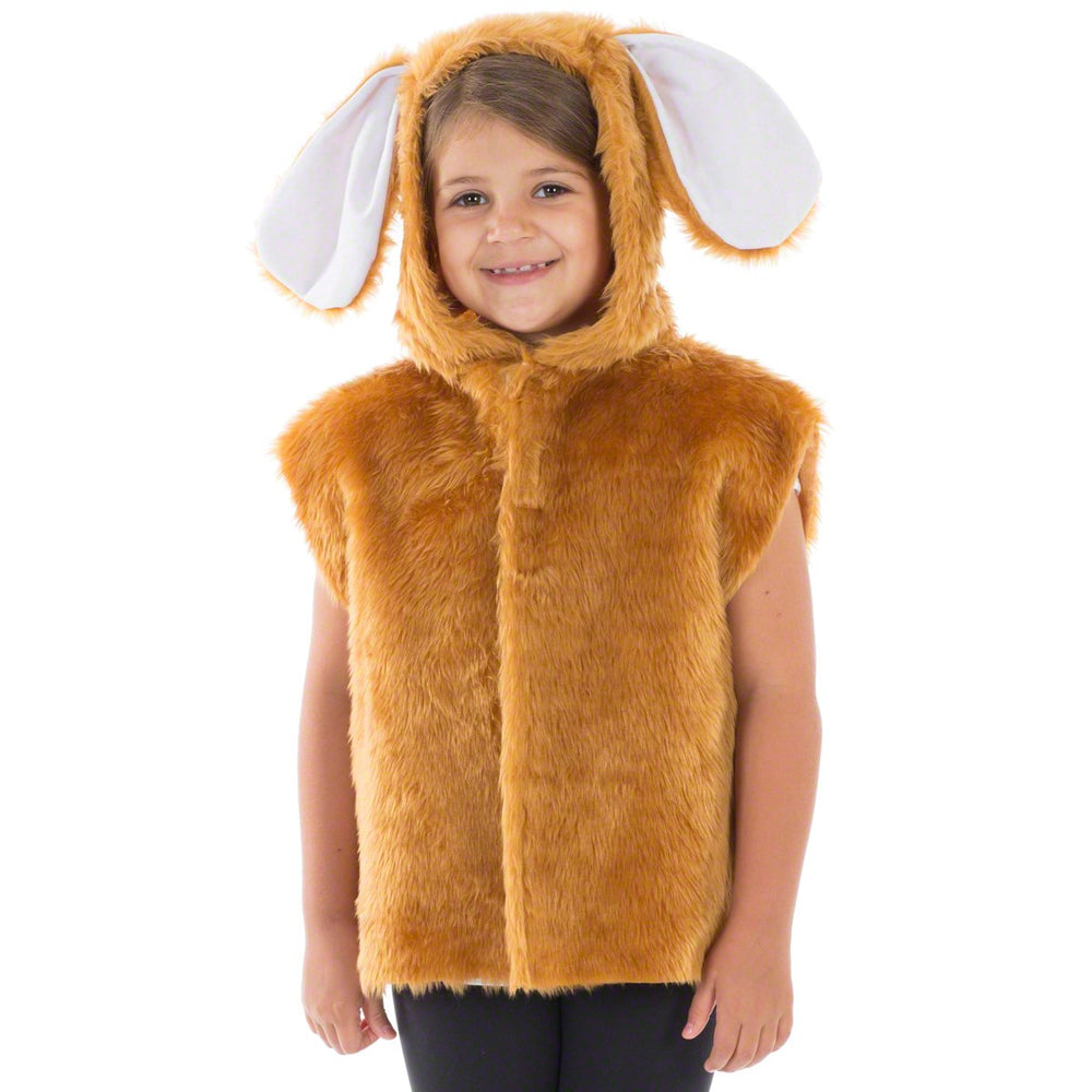 Image of Brown Rabbit | Hare costume for kids | Charlie Crow