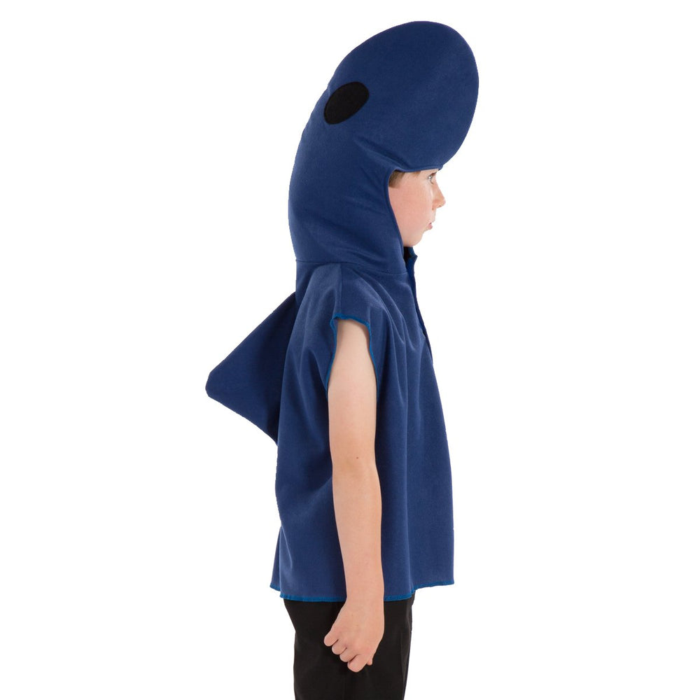 Image of Dolphin costume for kids | Charlie Crow