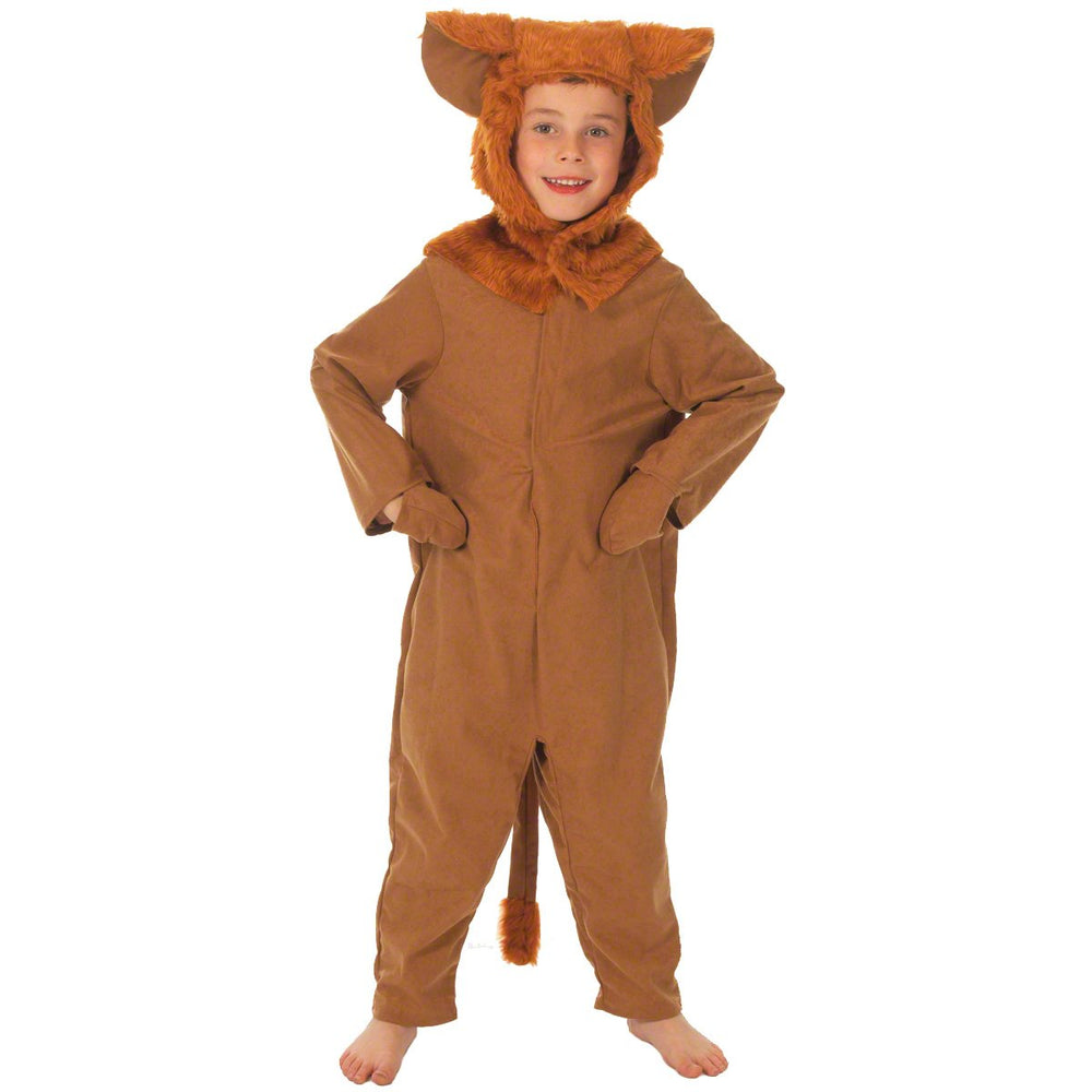 Image of Lion costume for kids | Charlie Crow