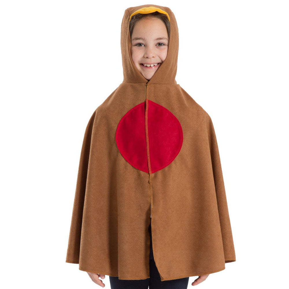 Image of Robin Bird kids fancy dress costume | Charlie Crow