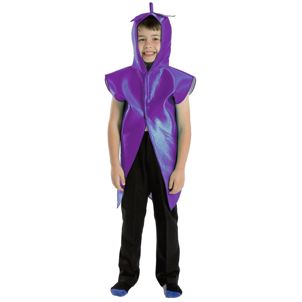 Image of Aubergine | grape Fruit Veg kids costume | Charlie Crow