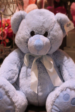 Cuddly Teddy Bear - Blue