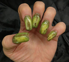 Creepy Claws: UNDEAD (green) by Dental Distortions