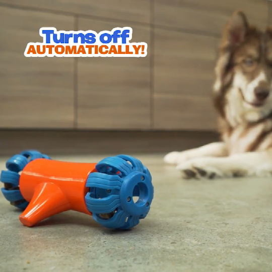 Bobo Bone Dog Toy