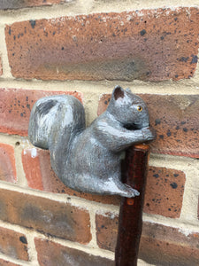 Hand Carved Grey Squirrel Walking Staff on a Crab Apple  Shaft.