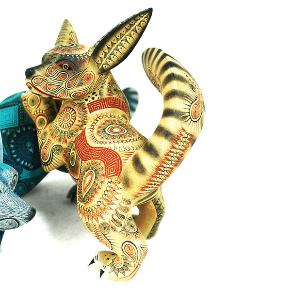 Rocio Fabian: Spectacular Playful  Foxes