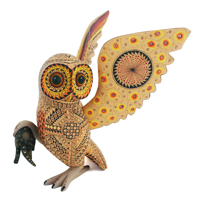 Agustin Cruz Preciado: Owl with Mouse