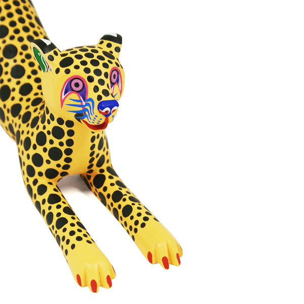 Gil & Miguel Santiago: Knotted Tail Cheetah