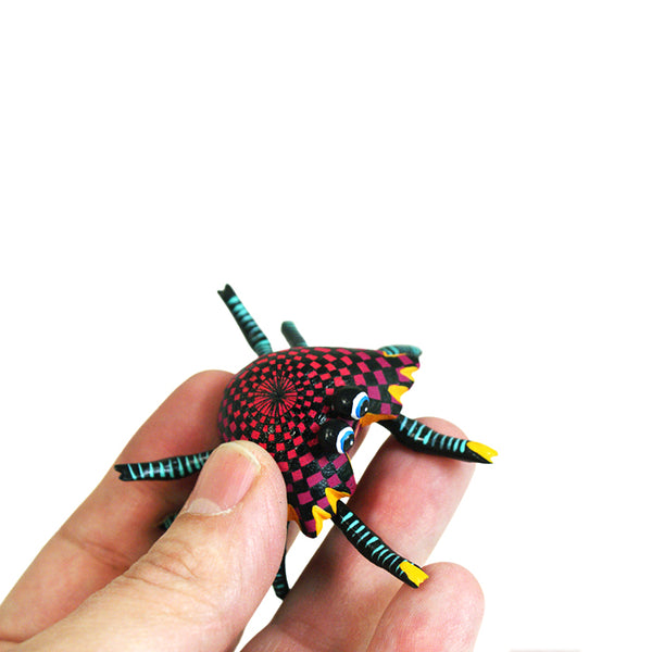 Jorge Cruz: Miniature  Red Crab