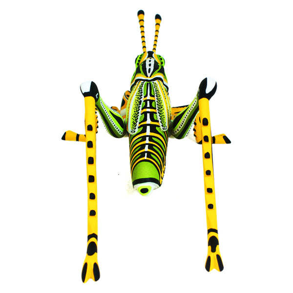 Luis Pablo:  Contemporary Grasshopper