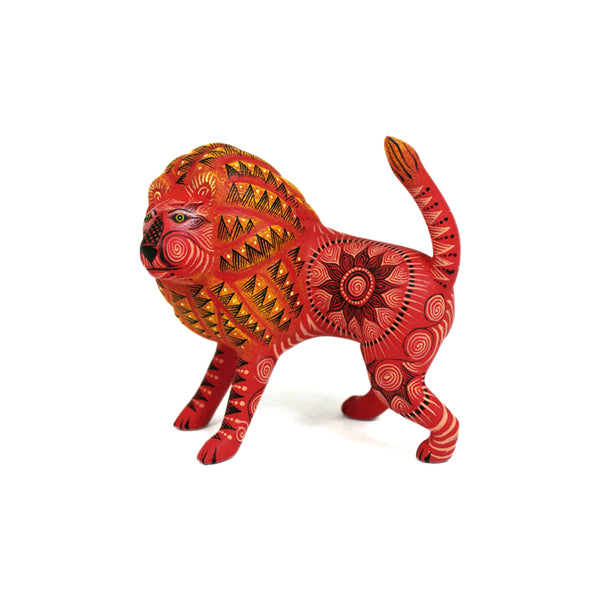 Rocio Fabian: Minature Red Lion