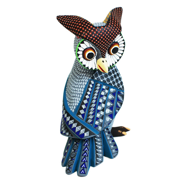 Eduardo Fabian: Beautiful Owl