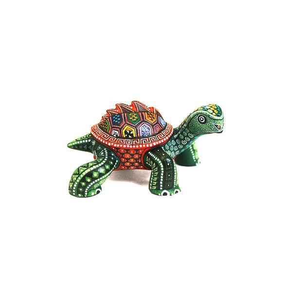 Manuel Cruz: Miniature Turtle