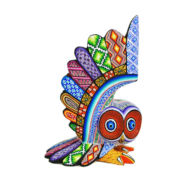 Jose Calvo & Magaly Fuentes: Colorful Owl