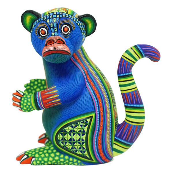Magaly Fuentes & Jose Calvo: Colorful Monkey