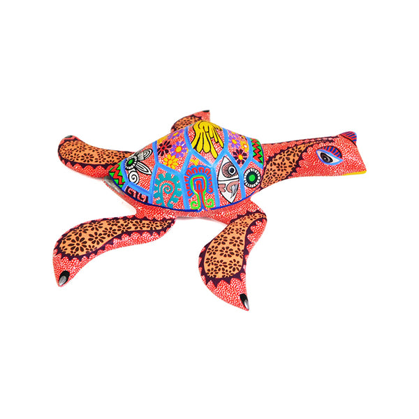 Bertha Cruz: Turtle