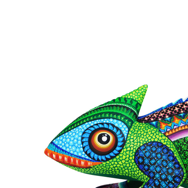 Jose Calvo & Magaly Fuentes: Colorful Chameleon