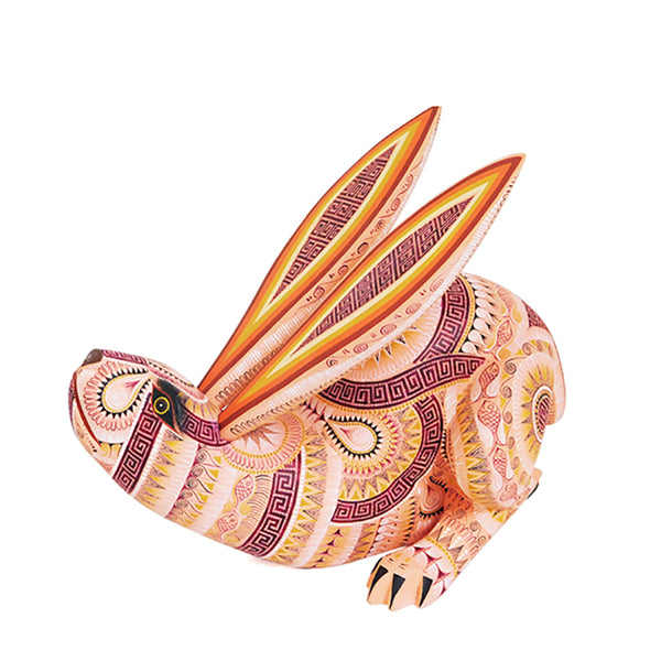 Rocio Fabian: Running Rabbit