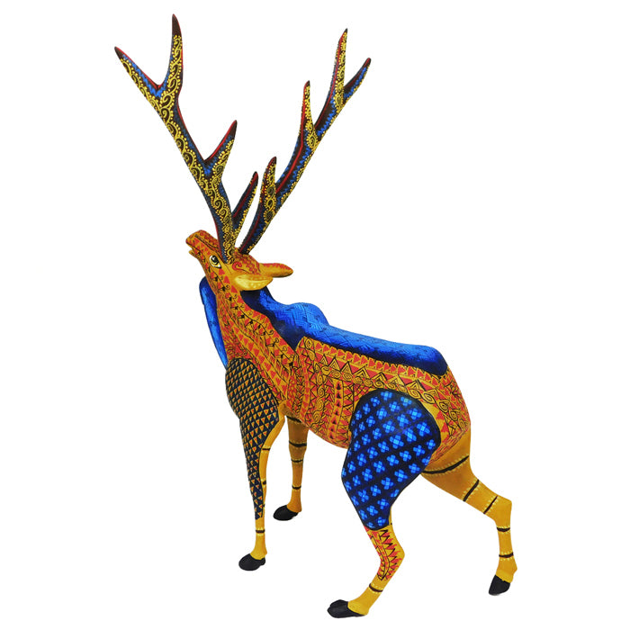 Tribus Mixes: Deer
