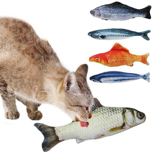 Realistic Looking Cat Fish Toy